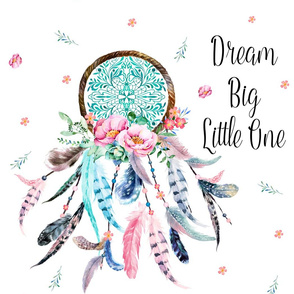"21""x36"" with  21""x28"" Illustration Dream Big Little One Pink and Aqua Dreamcatcher"