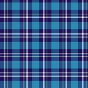 Earl of St. Andrews / St. Andrews District tartan, 4""