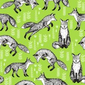 R5688451_rsketchy_fox_lime_green_shop_thumb