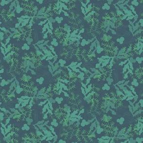 Green Seaweed Spray