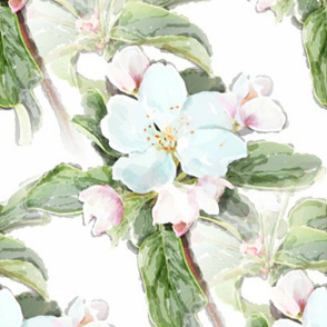 Apple Blossom Days