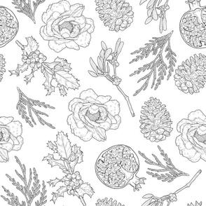 Holiday Botanical Illustrations Black and White
