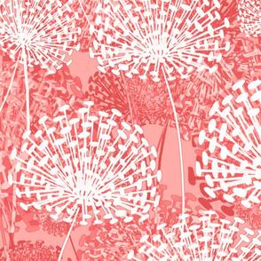 Vintage Pink Dandelions