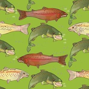 German Brown Trout Pattern 2G
