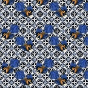 Blue Bird Trellis