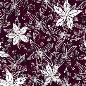 Poinsettia Dark - © Lucinda Wei