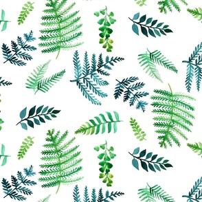 watercolor ferns
