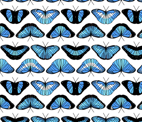 Morpho Butterflies fabric by chiral on Spoonflower - custom fabric