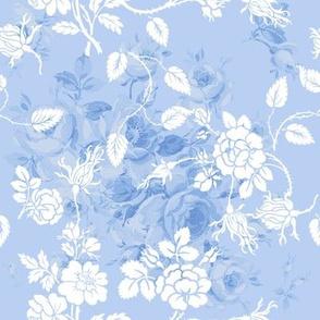 Lake Emily Summer Roses Rococo blueberry