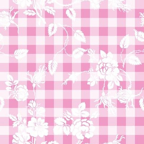 Gingham Rococo sorbet