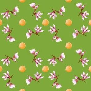 Peaches and peach blossoms jwq