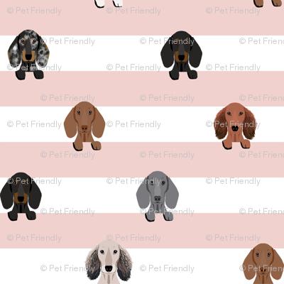 dachshund stripes dog breed fabric pink