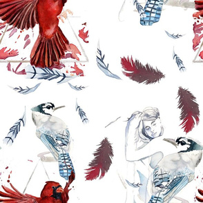 Cardinal & Blue Jay