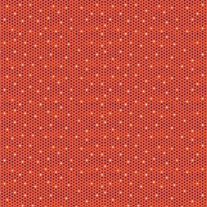 Blue on Orange Polka dot