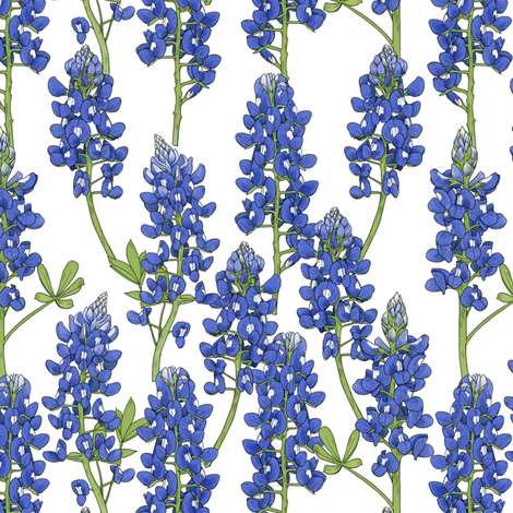 Small Scale Texas Bluebonnet Botanical Illustration fabric by landpenguin on Spoonflower - custom fabric