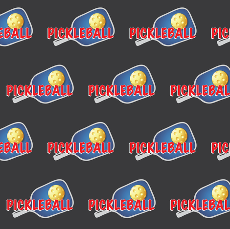 Pickleball_USA fabric by fabrique_dubois on Spoonflower - custom fabric