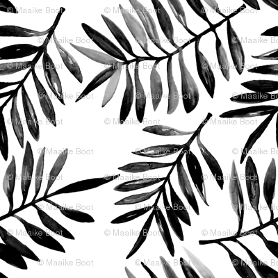 Botanical garden watercolors summer palm leaves monochrome black and white xs