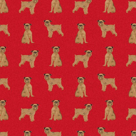R7382773_rbrussels-a-dog_shop_preview