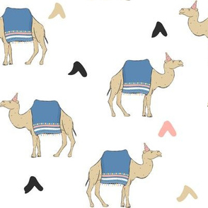Party Camels