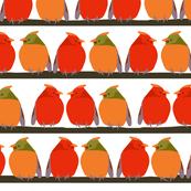 Cardinal Talk