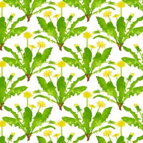 Dandelion Bunches - Large