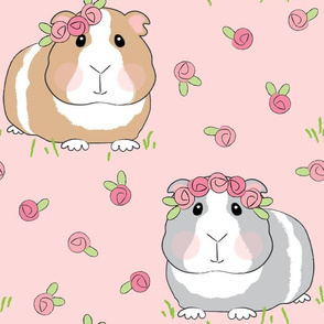 jumbo guinea pigs and pink roses