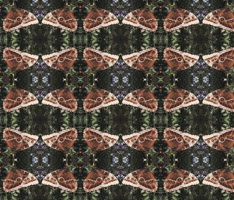 Rrrbutterfly-wing-pattern_shop_preview