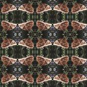 Rrrbutterfly-wing-pattern_shop_thumb