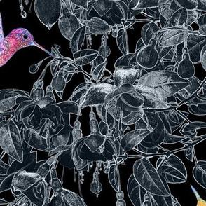 Hummingbirds & Fuschia Blooms LARGE