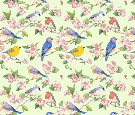 Raseabrook_songbirdrepeat_animalsoftheair052018_shop_preview