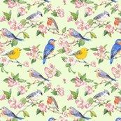 Raseabrook_songbirdrepeat_animalsoftheair052018_shop_thumb
