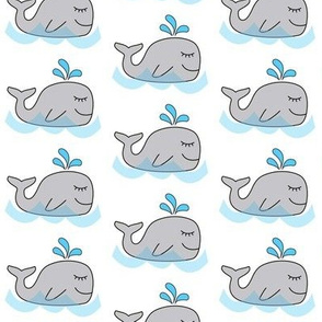 water spout whales
