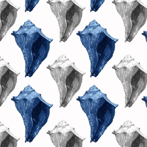 Conch Shells in Gray, White & Blue