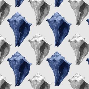 Blue & Gray Conch Shells