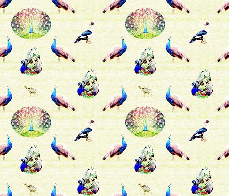 peacock pat2 fabric by lafutura on Spoonflower - custom fabric