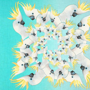 Whirling Cockatoos