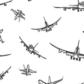 Plane Sketches // Large