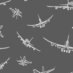 Plane Sketches on Dark Grey // Large