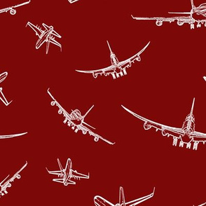 Plane Sketches on Maroon // Large