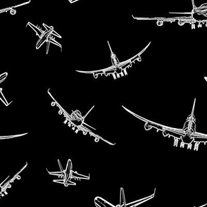 Plane Sketches on Black // Large