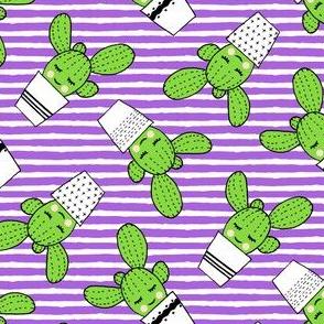 happy cactus - potted succulents - purple stripes