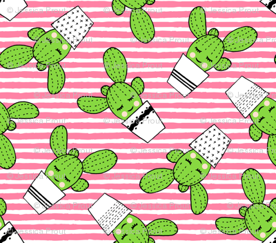 happy cactus - potted succulents - med pink stripes
