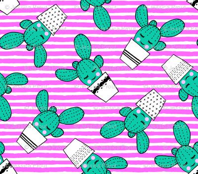happy cactus - potted succulents - aqua on pink