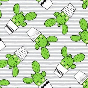 happy cactus - potted succulents - grey stripes