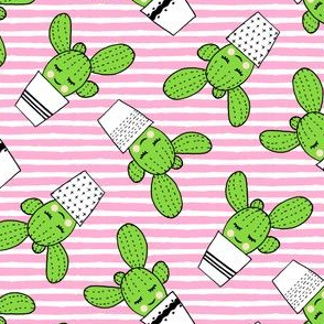 happy cactus - potted succulents - pink stripes