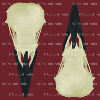 Large Raven Skulls on red background