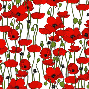Poppy repeat white - medium
