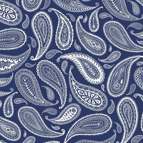 Paisley Coordinate - white on dark blue - large print