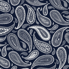 Paisley Coordinate - white on dark navy - large print