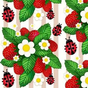 Summer Strawberries / Tan Stripe w/ Ladybugs